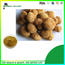 GMP factory best products High Quality Monkey Head Mushroom Extract/ Hericium Erinaceus Extract Polysaccharide 300g/lot