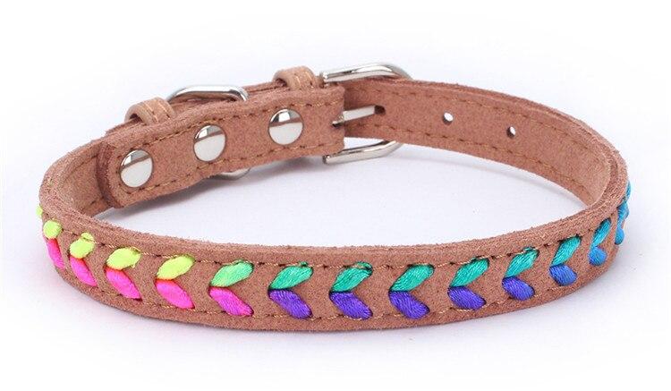 dogs collar (10)