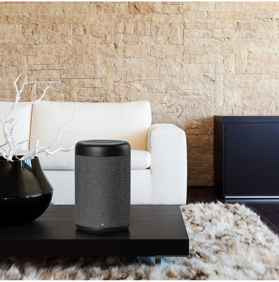 Portable Speaker for Echo 10