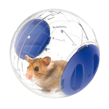 1x Plastic Pet Exercise Ball Animals Mice Hamster Gerbil Safe Jogging Play Cage