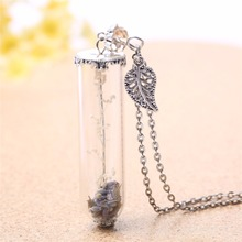 long bottle dry flower inside lady girl vintage style glass cover charm Necklace DIY hand made Jewelry 3569