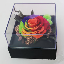 Upscale Real and big colorful Immortal roses preserved flower in gift box for Presents for Daughter Holiday Gifts for Parents