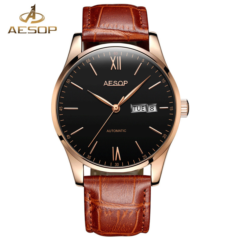 AESOP Men Watch Automatic Mechanical Thin Men Wrist Wristwatch Leather Strap Male Clock Simple Relogio Masculino Famous Brand 27<br>
