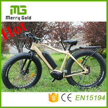 Fat tire e bicycle china 48v 500w e bike adult mountain electric bicycle with lithium battery paladin ebikes(China)