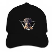 01210775a33 Print Custom Baseball Cap Hip Hop Sticker Car Wirehaired Dachshund Tagless  Hat Peaked cap(China