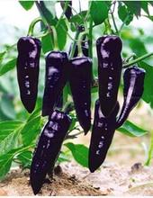 Семена перца чили для выращивания 936
