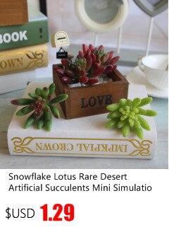 4 Kinds Artificial Succulents Plants Lifelike Mini Grass Desert Artificial Plant Landscape Fake Flower Wedding Decorations