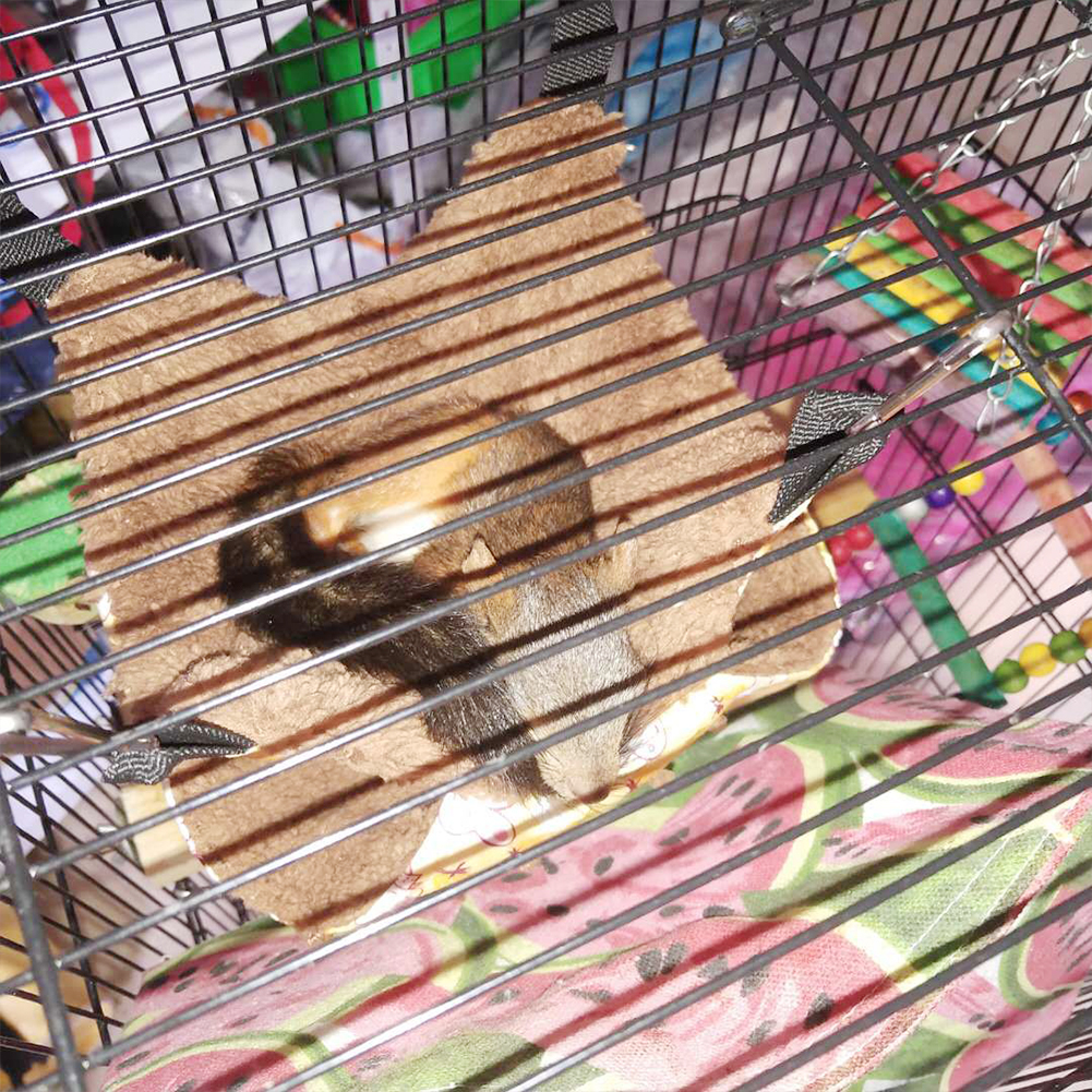 Caminha para Hamster Estilo Casinha