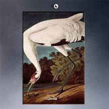 Whooping Crane By John James Audubon Art Print Original Huge Poster For Wall Decor Print On Canvas Canvas Printings Classical(China)