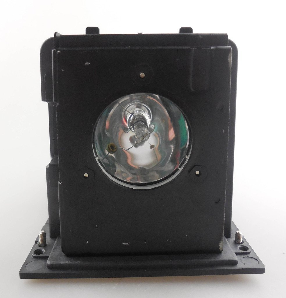 BL-FU250F / SP.L3703.001 Replacement Projector Lamp with Housing for OPTOMA H77 / H78 / H78DC3 / H79 / H76<br>