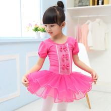 3-14Y Children Ballet Dress Girls Ballet Dance Clothing Ballerina Dress Kids Ballet Costume Dancewear Pink Tutu Ballet Leotard(China)