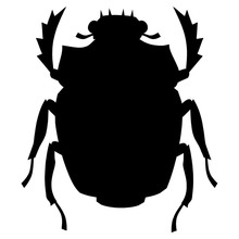 8.3*9.5CM Egyptian Scarab Beetle Car Styling Creative Animal Car Sticker Cool Funny Accessories Black/Silver(China)