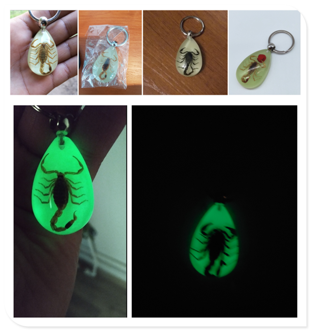 Car motorcycle light insect keychain scorpion key ring for Renault Initiale Fluence Alpine Wind R-Space 2 3.2