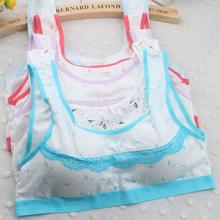 2016 Lovely Padded Bra Girls Underwear Lace Fitness Children Bra Vest Underclothes For Teenagers Bras Sujetadores Mujer