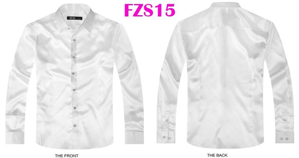 FZS15