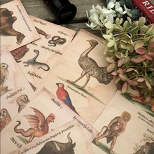 16pcs/pack/lot NEW Students' DIY gift cards set Vintage Mysterious creatures postcard Nice Bookmark cards collection
