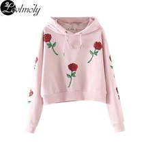 Levlmoly 2017 New Arrival Rose Eimbroidered Bling Hoodie for Autumn AXC742(China)