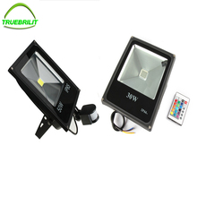 LED Floodlights RGB Remote 24key Controller 10W 20W 30W 50W Waterproof IP65 PIR Motion Sensor Flood Lamps Outdoor 110v 220v(China)