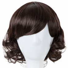 Fei-Show Inclined Bangs Hair Synthetic Heat Resistance Fiber Dark Brown Short Curly Children Wigs for 50CM Head Circumference