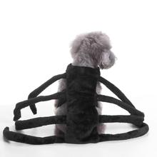 1PC Pet Clothes Halloween Pet Dog Dresses Ghost Festival Dress Up Jacket Spider Section Clothes pet supplies #GH50(China)