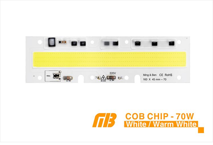 COB CHIP_04