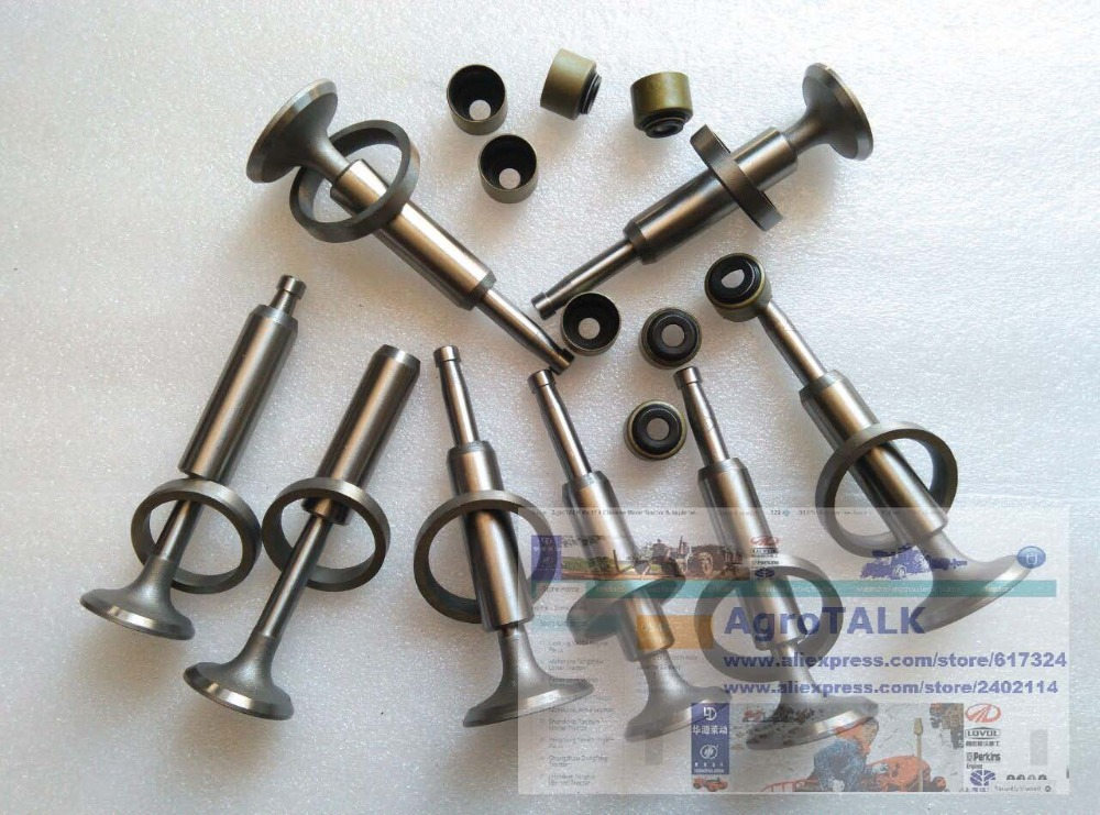 JIANGDONG JD495 for tractor like JINMA LUZHONG, the set of intake and exhaust valve group as picture showed<br>