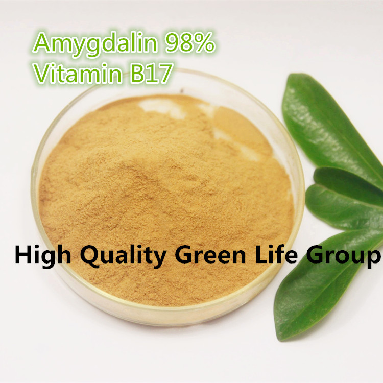 TOP quality 200g Amygdalin with 99% bitter almond extract /Bitter Apricot Seed Extract powder Vitamin B17 HPLC VB17<br>