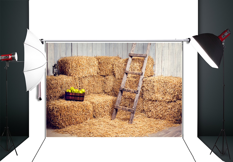 10x10ft haystack ArtFabric Photography Backdrop Printed background Newborns Portrait Background D-6168<br><br>Aliexpress