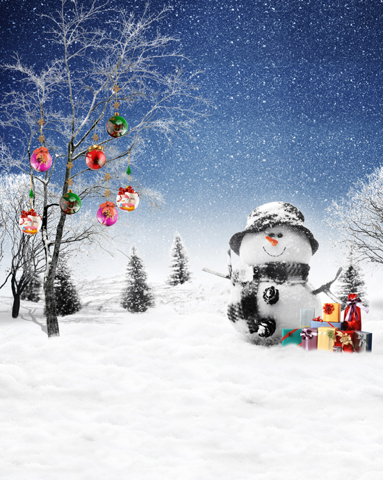 Customize photography backdrops Christmas snowman vinyl digital cloth for photo studio portrait background L-863<br>