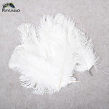Featured white ostrich feather Beautiful party decorating plumes About 15cm-20cm natural ostrich feathers 10pcs/lot Factory sale