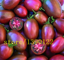 200 tomato seeds cherry tomato black and red colors no-gmo vegetable seeds for home garden planting