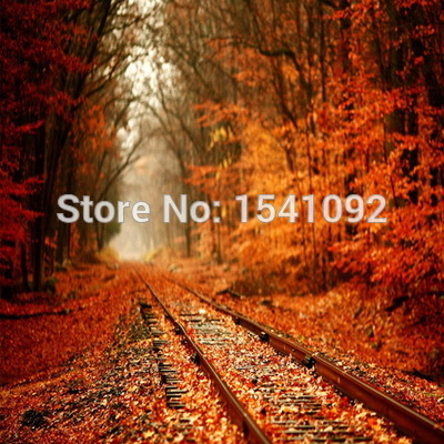 10x10ft Customize free shipping Thin vinyl cloth photography backdrop scenery computer Printing background for photo studio f168<br>