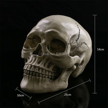 1:1 Human Skull brain Resin Replica bones Medical Model Life size anatomy skeleton anatomical anatomia Exploded skull(China)