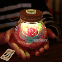 2017 New Arrival LED Romantic Night Lights 16 Colors Rose Flower Lantern Lamp Creative Gift For Girls Lady Mother +IR Controller(China)