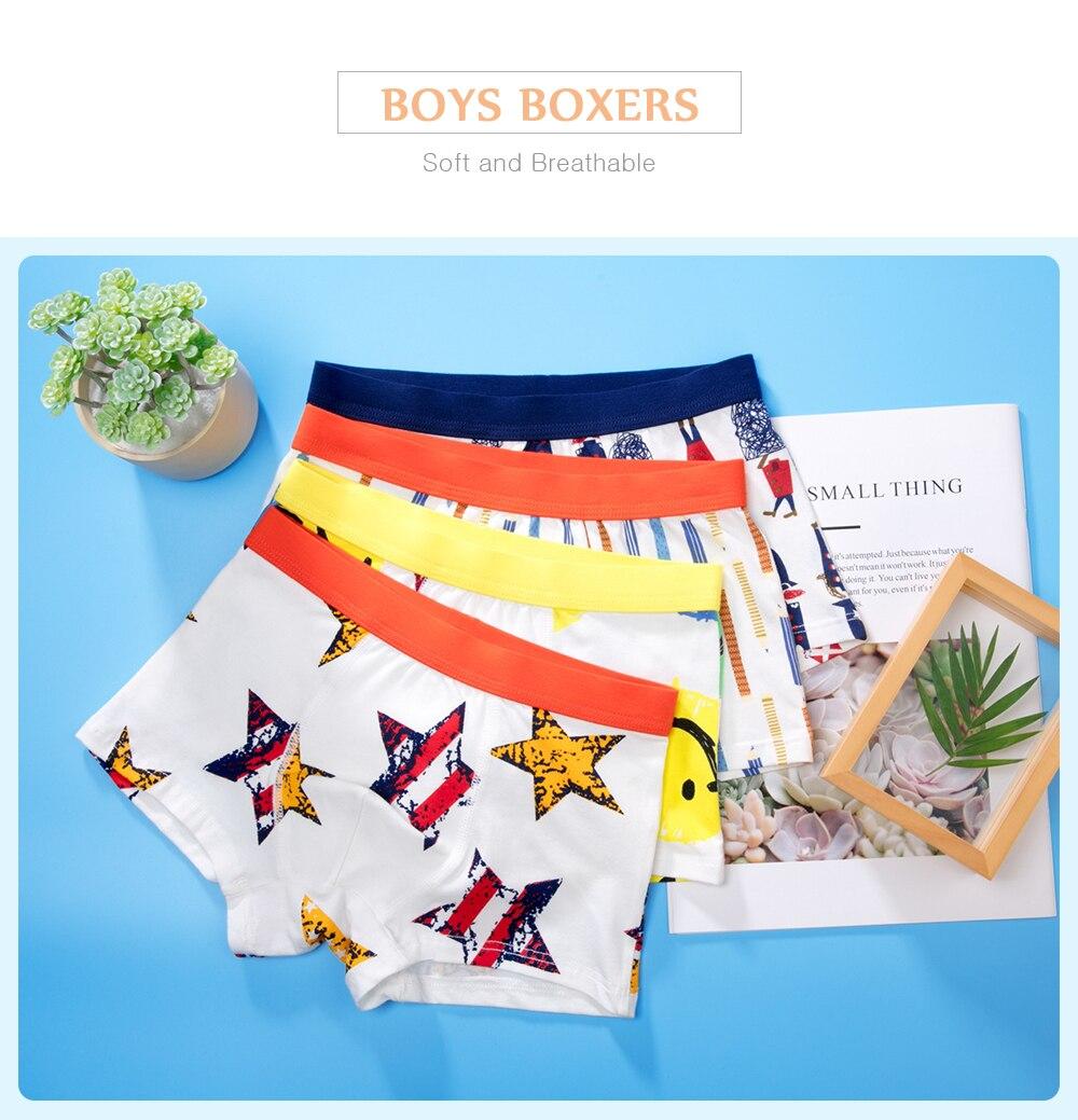 Boy Boxers (3)