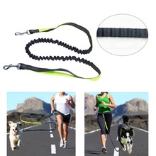 HOT Pet Dog Nylon Rope Training Leash Lead Strap Adjustable Traction Collar(China)