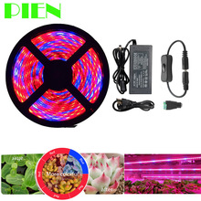 Plant Grow lights Full Spectrum LED Strip Flower phyto lamp 5m Waterproof Red blue 4:1 for Greenhouse Hydroponic + Power adapter(China)