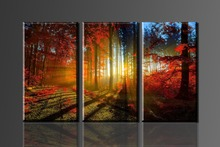 Red maple leaves in the woods and sun, 3 Panels/Set HD picture Canvas Print Painting Artwork, Wall decorative painting(China)