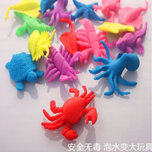 2016 Novelty water grow up ocean animal rose flower fish for child educational toys kids immagination toys free shipping 5pcs