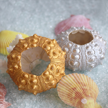 Free Shipping(6pcs/lot)Golden&Silver Avender Sea Urchin Natural Shell Conch Beach Wedding Decoration Coastal Home Decoration(China)