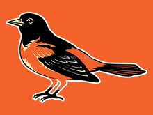 Baltimore Orioles Flag 150X90CM 3X5FT Banner 100D Polyester grommets custom009, free shipping(China)