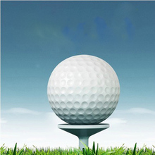 Free Shipping 10PCS Golf Game Ball tow Layers High-Grade Golf Ball Wholesale Direct Manufacturer Promotion Golf Balls(China)