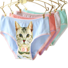 Buy Cat Underwear Women Panties Plus Size Cotton Cat Briefs 3D Printing Pussy Cat Panties Breathable Intimates Girls Meow Lingerie