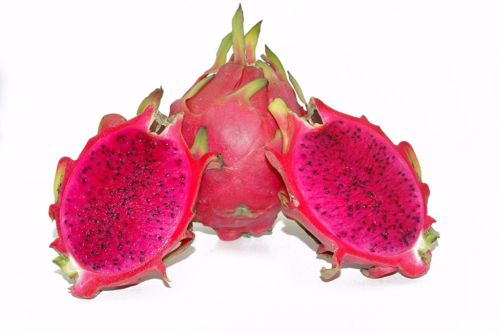 HTB15oA0JFXXXXX.XpXXq6xXFXXX8 - 100pcs Dragon fruit Seeds Dwarf Fruit Trees Bonsai