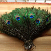 Free Shipping 50pcs/Pack Beautiful Natural Peacock Tail Feathers About 8-12inch For DIY Decoration(China)