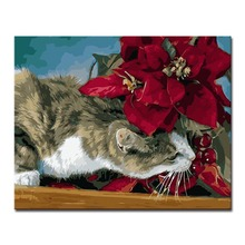 DIY Oil Painting By Numbers Kits Coloring Hand Painted Red Flowers And Cats Canvas Pictures Home Decor Wall Artwork Framework(China)