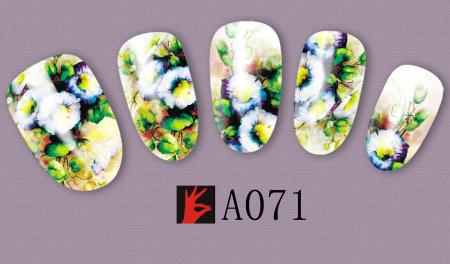 A071(1)