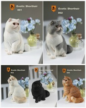 Real Animal Series No.8 1/6TH Scale Exotic Shorthair Cat (Garfield) Statue 4 Colors Collections