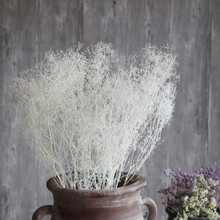 Dream grass natural art dried flowers wholesale hay import shooting props small bouquet gift real flower stars home decoration