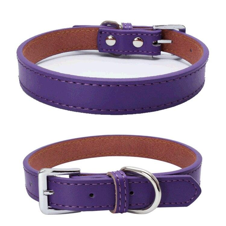 Dog Collars (3)